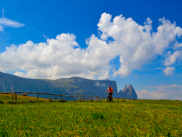 Private Experience (price per group): GUIDED MTB/E-MTB TOUR ON THE ALPE DI SIUSI