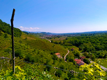 Private Experience (price per group): PROSECCO HILLS AND MORE