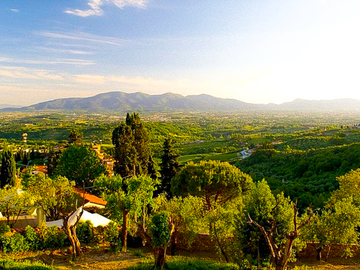 Experience (price per person): TOUR OF THE LUCCHESI VILLAS