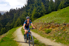 Private Experience (price per group): MTB TOUR MERANO AND SURROUNDINGS
