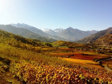 Experience (price per person): THE COLORS OF THE AUTUMN