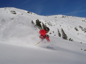 Experience (price per person): FREERIDE IN THE SKICIRCUS SAALBACH • FIEBERBRUNN
