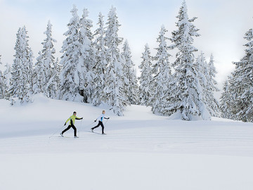 Experience (price per person): PRIVATE CROSS-COUNTRY COURSES • FIEBERBRUNN