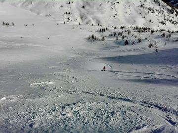 Private Experience (price per group): Freeride ski in Piedmont ski areas