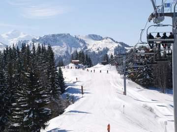 Experience (price per person): Ski lesson Port du Soleil: Morzine-Les Gets-Avoriaz (full day)