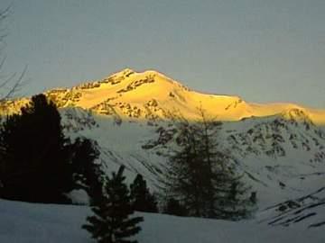 Experience (price per group): Sci Alpinismo sul Monte Cevedale