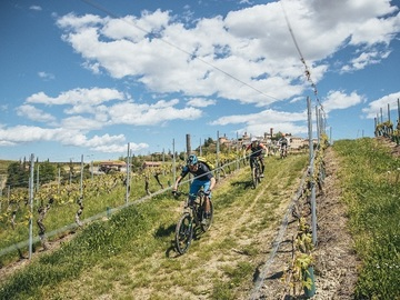 Social Experience (price per person): MTB / E-MTB sulle colline del Barbaresco