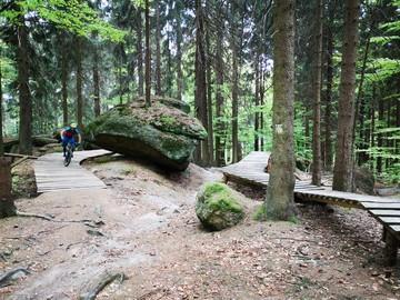 Avventura (prezzo per persona): Fahrtechnik Camp Ochsenkopf