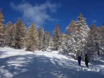 Adventure (price per group): Sci Alpinismo in Valle d'Aosta