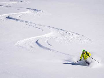 Experience (price per person): Freeride ski in the Central Alps