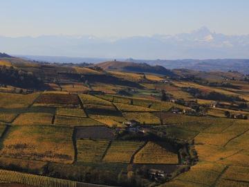 Esperienza (prezzo a persona): Esplorando le colline Unesco