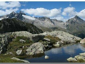 Experience (price per person): Lake Pirola and Larice Millenario