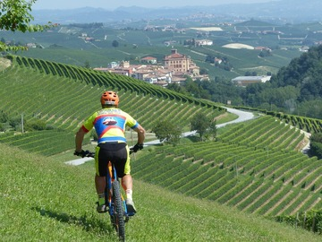 Experience (price per person): Tour of Barolo (Cycling)