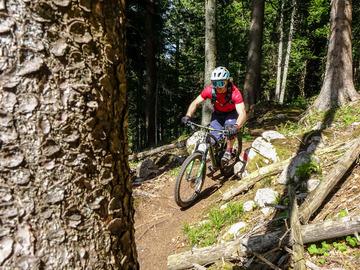 """Experience (price per person): Bergamo: Explore the """"Parco dei Colli"""" in MTB"""