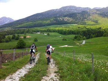 Experience (price per person): Lago Santa Croce Tour Alpago Experience