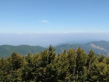 Experience (price per person): Hiking in the Aspromonte