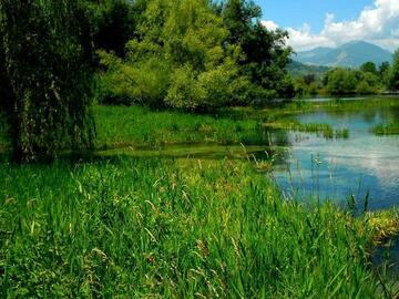 Experience (price per group): Riserva Naturale Lago di Posta Fibreno