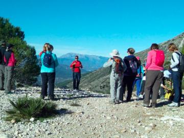 Experience (price per person): Mijas trekking experience