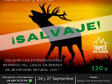 """Experience (price per person): BERREA Y SENDERISMO - Montaña Palentina """"SALVAJE"""""""