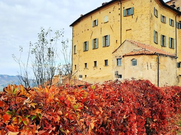 Experience (price per person): Foliage nella Val Borbera