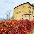 Experience (price per person): Foliage nella Val Borbera
