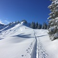 Experience (price per person): Ski touring weekend in the Allgäu (Germany)