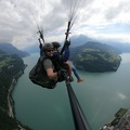 Experience (price per person): Paragliding in Brunnen (Experience)