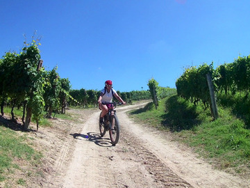 Experience (price per person): Tour del Barbaresco